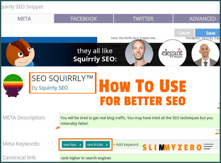 How to use Squirrl SEO plugin for your blog optimization copy